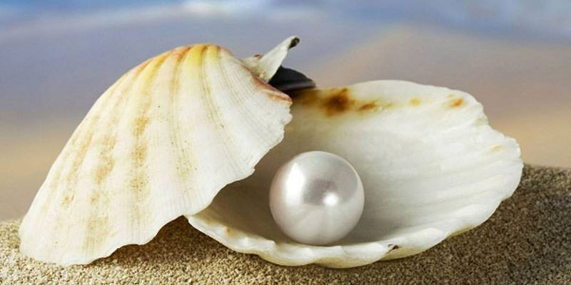 Buy Diamond painting kit-Sea pearl-DM-031