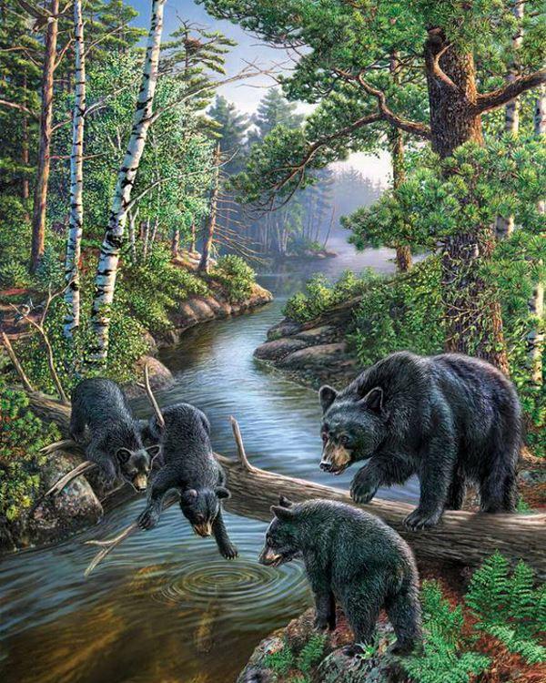Buy Diamond painting kit-Bears on the hunt-DM-062