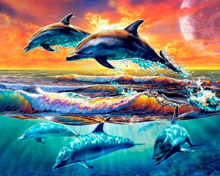 Buy Diamond painting kit-Games of dolphins-DM-208