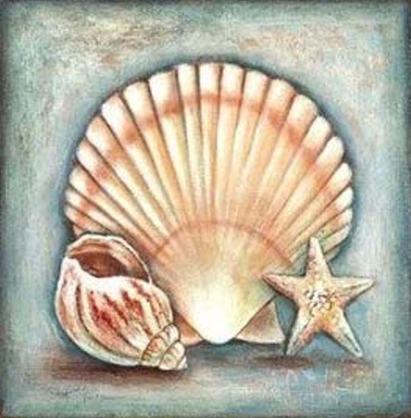 Buy Diamond painting kit-Sea shell-DM-213