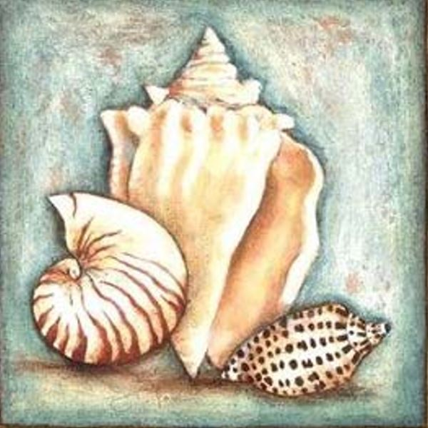 Buy Diamond painting kit-Sea shells-DM-214